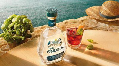 o'ndina gin